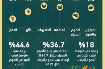 الأمن الغذائي في مصر
