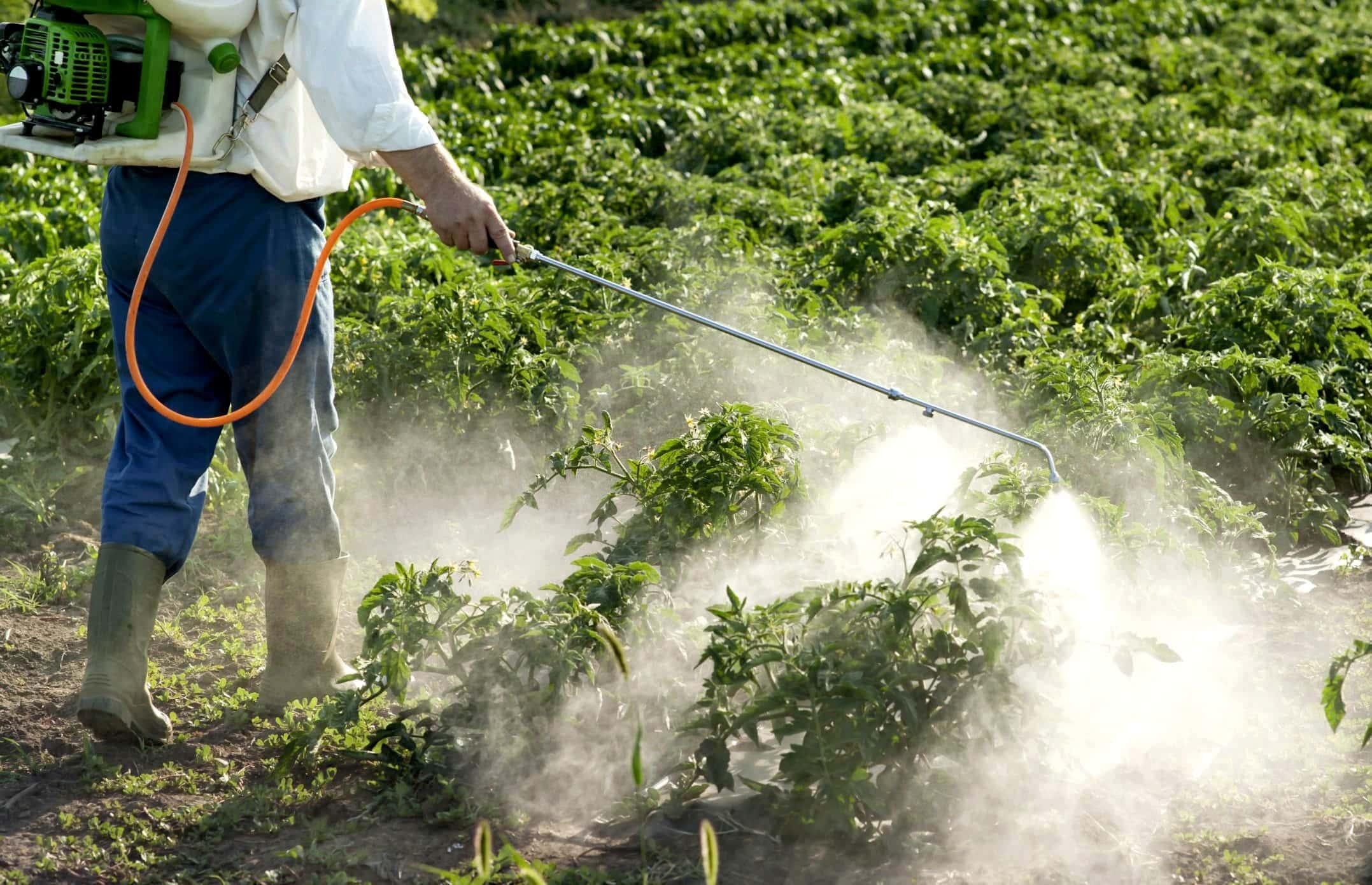 أزمة متبقيات المبيدات