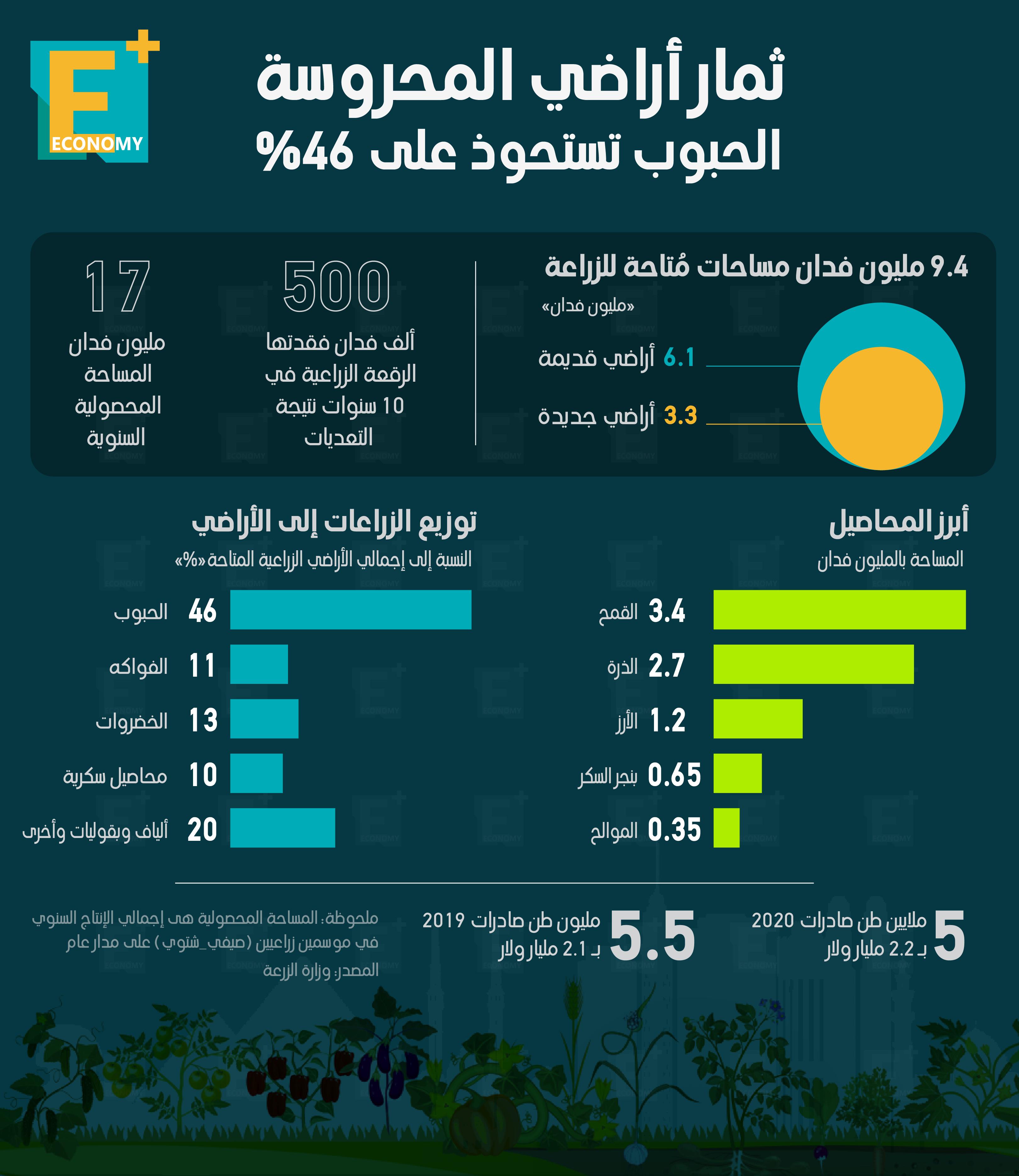 ثمار أراضي المحروسة.. الحبوب تستحوذ على 46%