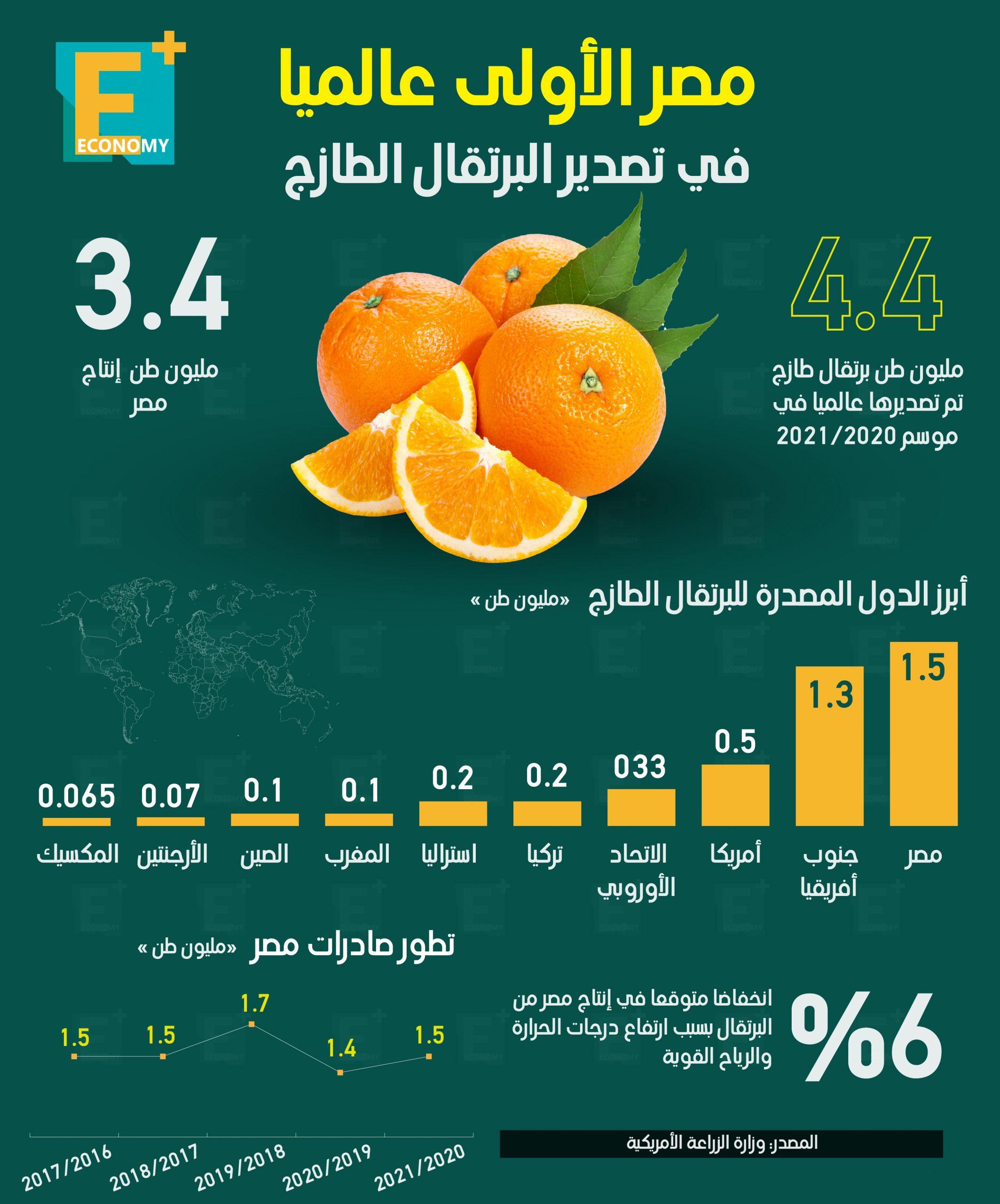مصر الأولى عالميًا في تصدير البرتقال الطازج