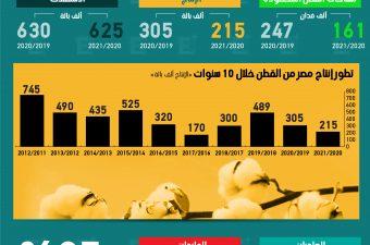 إنتاج مصر من القطن يتراجع 71% خلال 10 سنوات