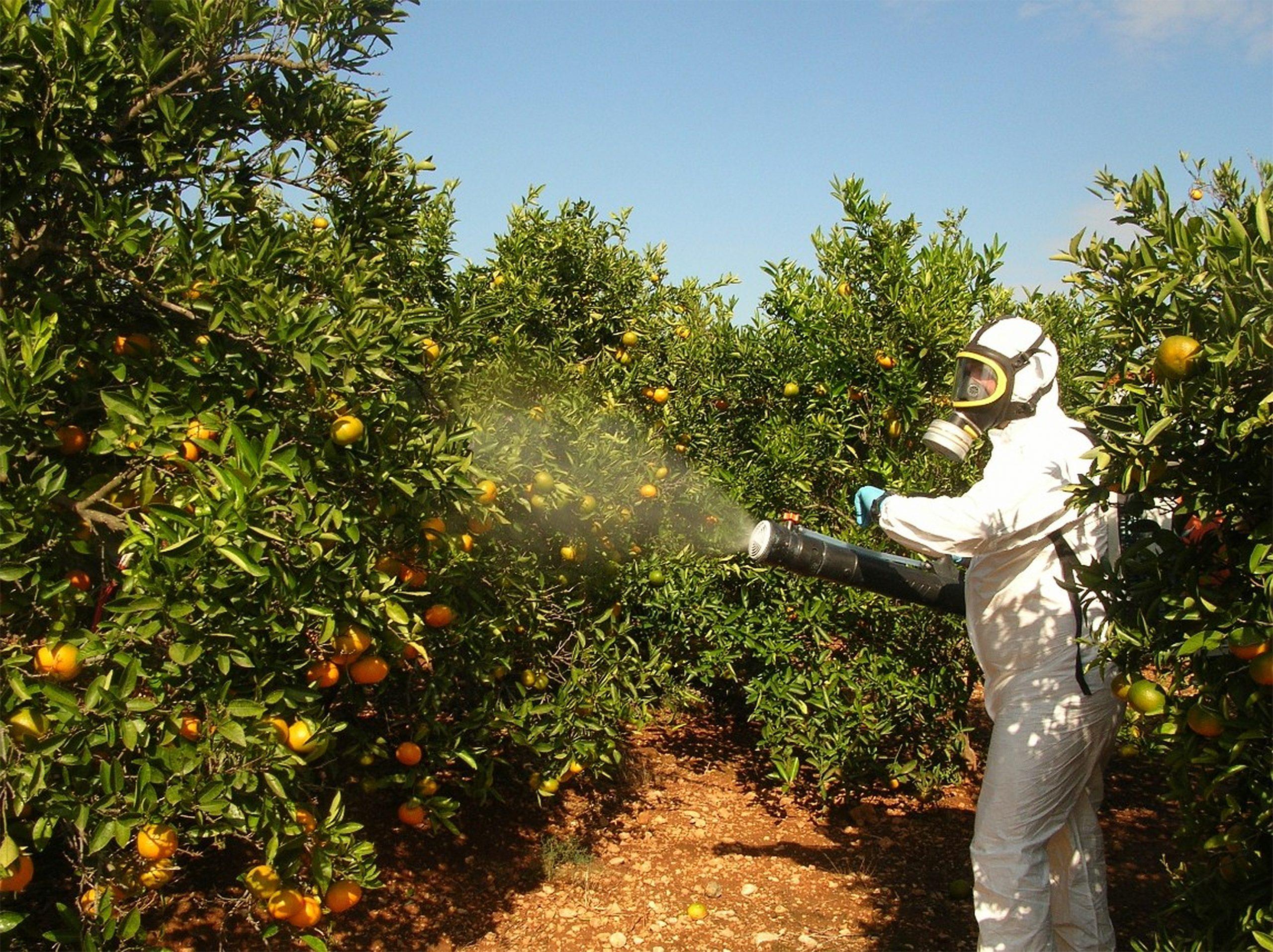 متبقيات المبيدات