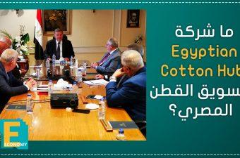 ما شركة Egyptian Cotton Hub لتسويق القطن المصري؟
