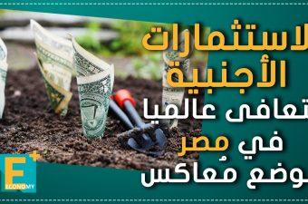 الاستثمارات الأجنبية تتعافى عالميا.. في مصر الوضع مُعاكس